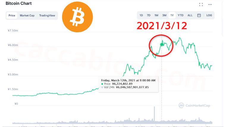 【仮想通貨は怖い?】運用コインの利益と損失<2021年3月レポート>